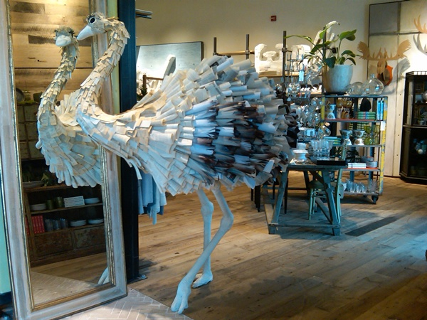Anthropologie ostrich